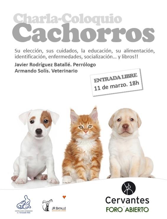 Charla-Coloquio CACHORROS